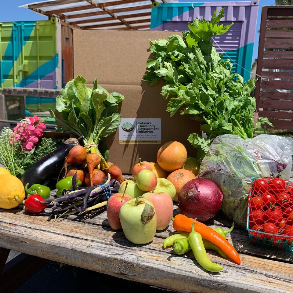 Image for FOOD: Prep & Harvest Produce Boxes
