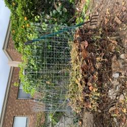 Image for ECO: Compost Pile Build
