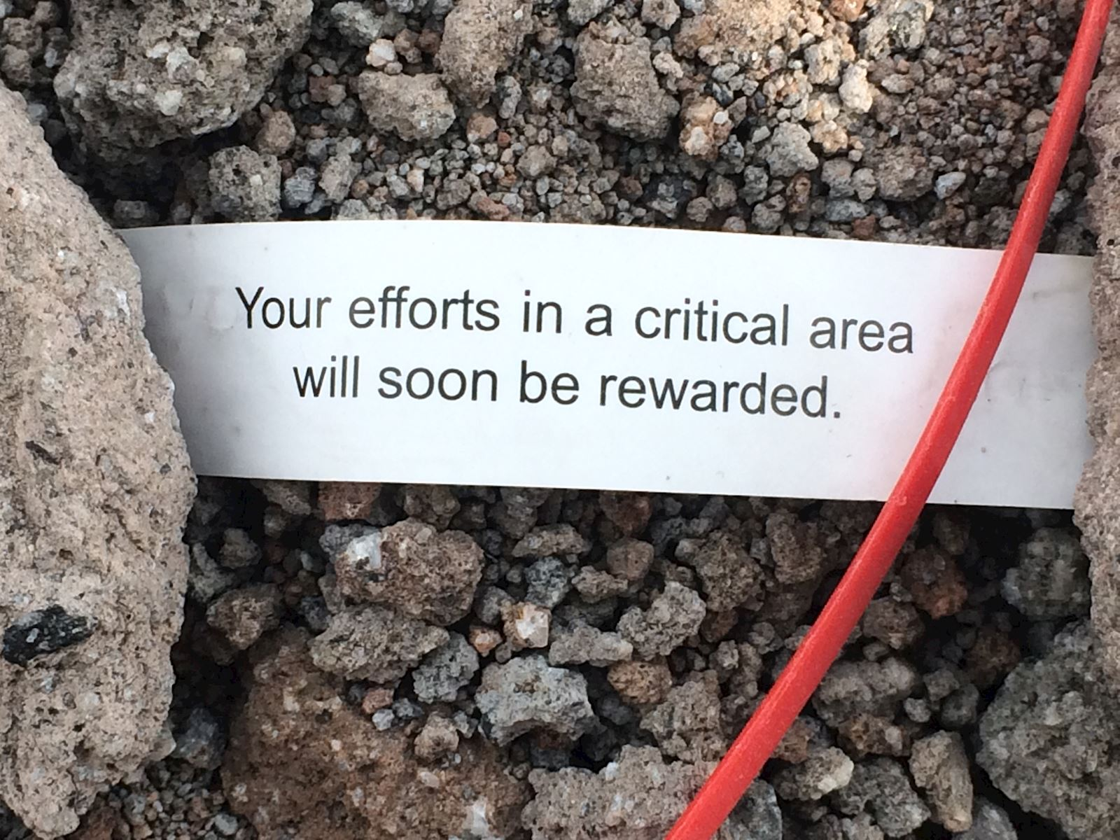Fortune Cookie that reads, Your efforts in a critical area will soon be rewarded