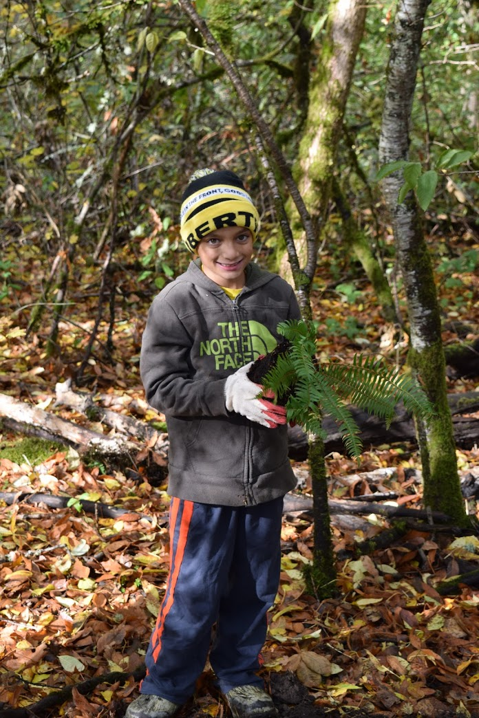 Helping native species thrive by restoring the habitat