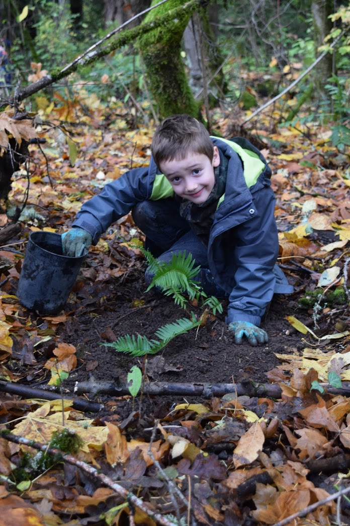Planting Native Species