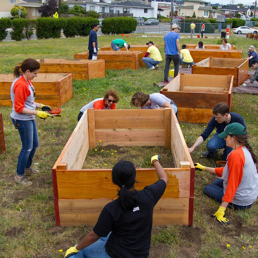 employee volunteering handson bay area