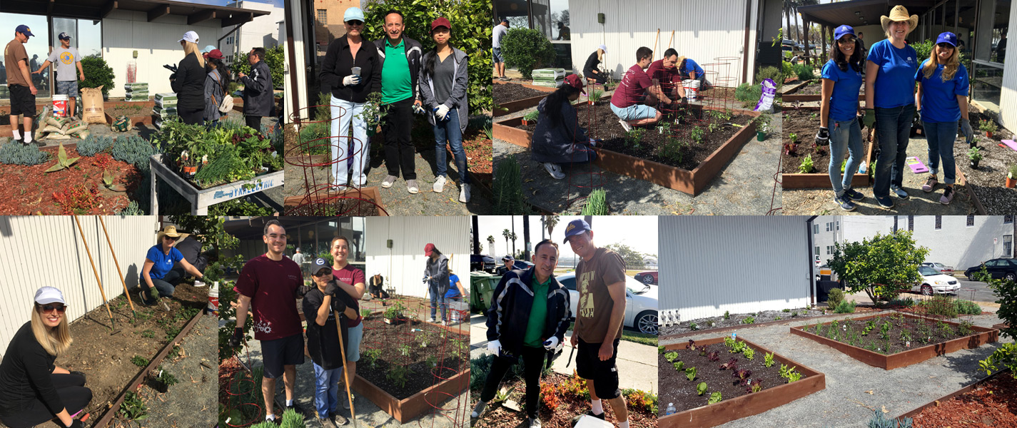 Corporate Volunteer Council's Spring Service Project with Beacon House