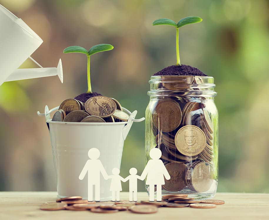 Growing money for family concept